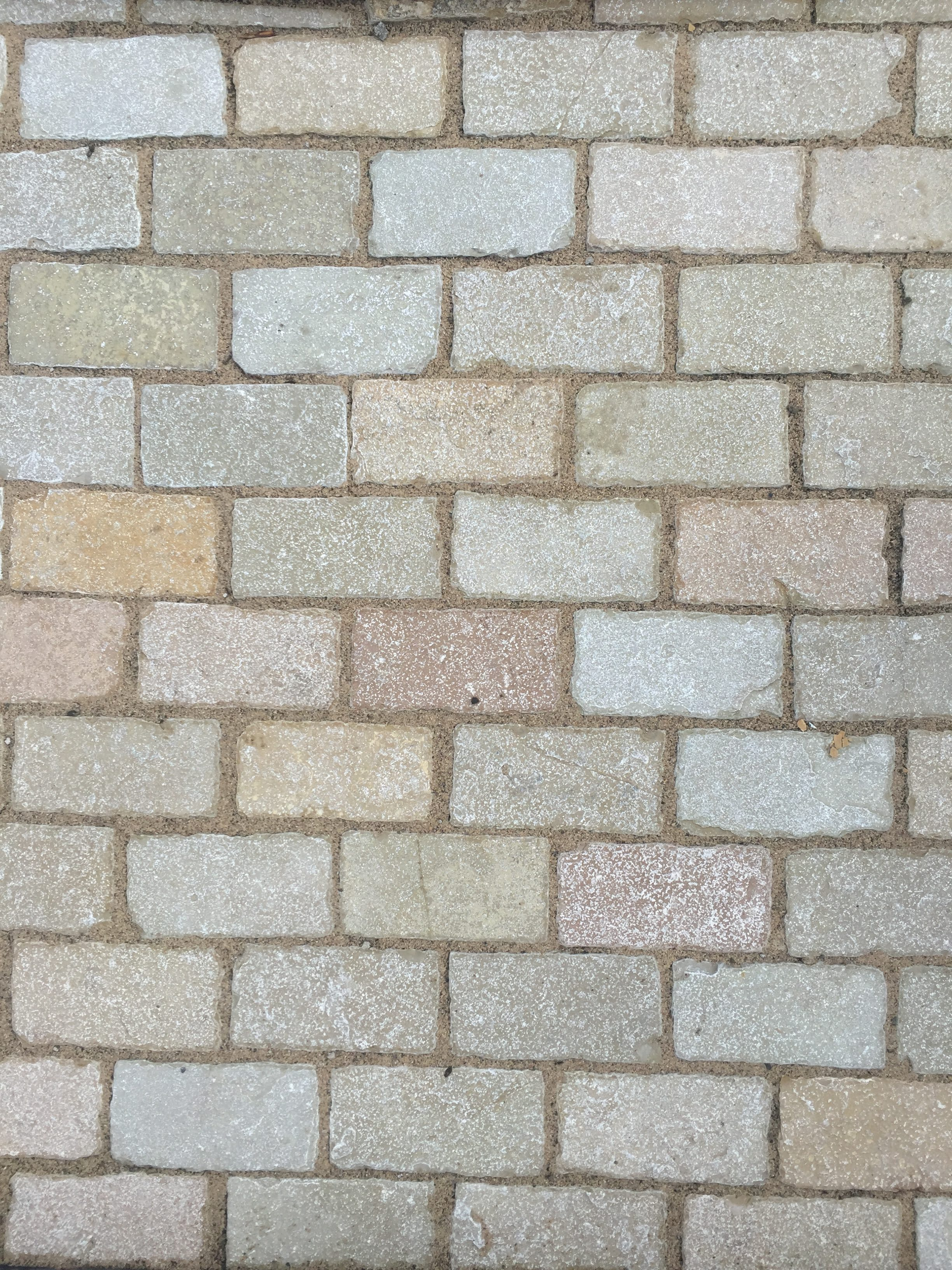 Yellow Limestone Cobble Tumbled